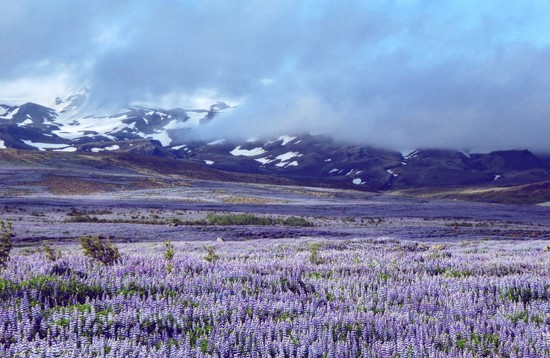 A Little More Iceland | 4x4 Rondreis IJsland